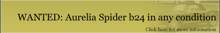 WANTED: Aurelia Spider b24